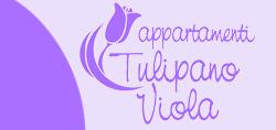 app-tulipanoviola-piccolo